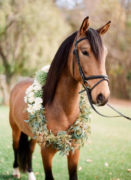idée originale mariage champetre ivoire chocolat cheval