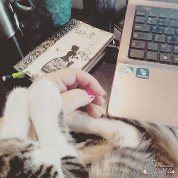 blogueuse creatrice et calineuse cereza