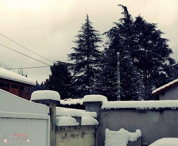 neige-atelier-mariage-janvier-2017